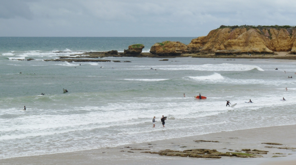 2011-01-17 Great Ocean Road 005