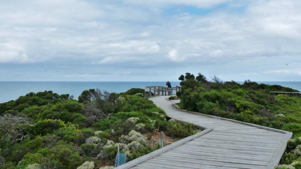 2011-01-17 Great Ocean Road 009