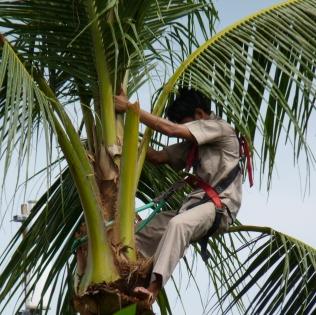 2011-03-16 Bali 017