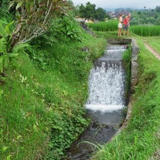 2011-03-18 Bali 098