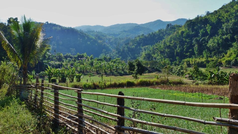 Nordthailand 446