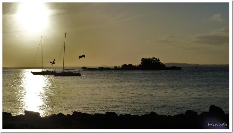 2015-03-16 16.03. - Nelson Bay 113