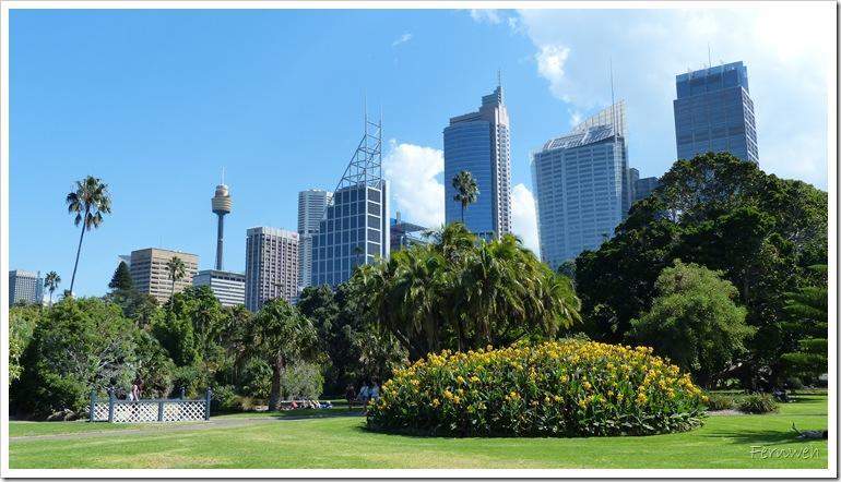 2015-03-18 18.03. - Sydney 075