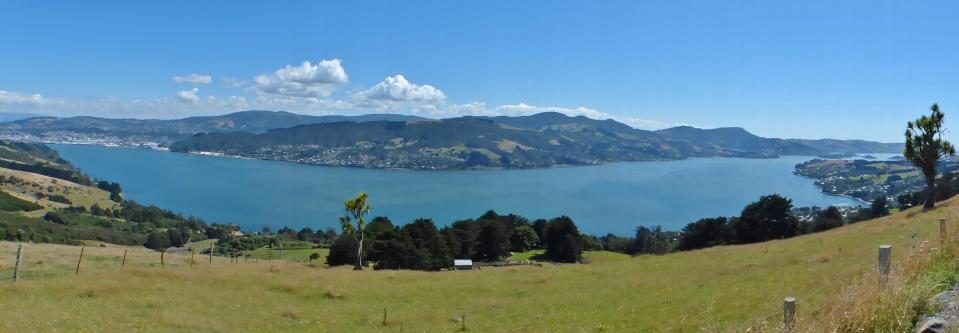 2015-02-17 17.02. - Dunedin 043