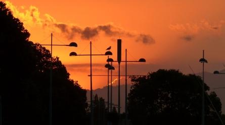 Abendlicht in Whakatane