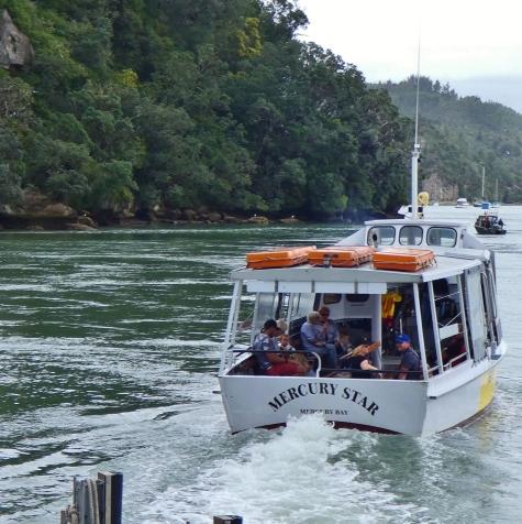 Ferry Whitianga, Coromandel