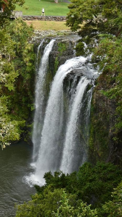 Whangaei Falls