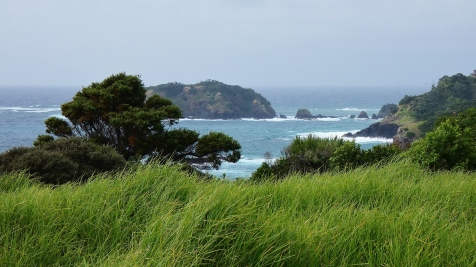 Coast near Tutukaka