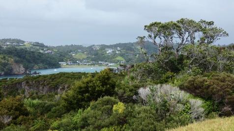 View towards Tutukaka