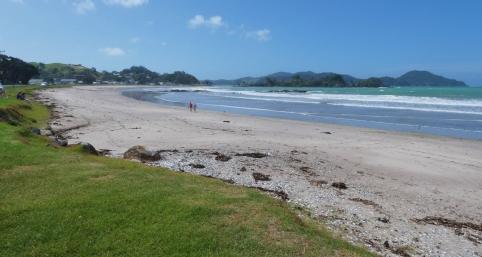 Whangaruru Beach