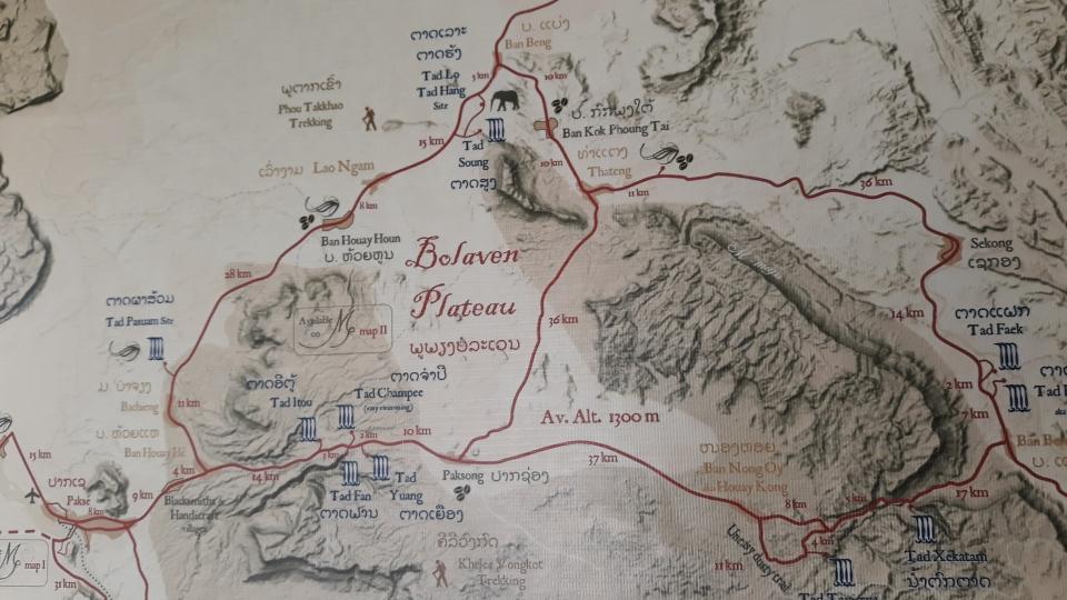 Bolaven Plateau F E R N W E H